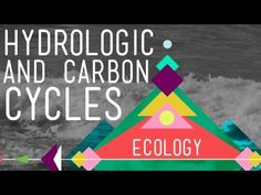 crash course hydrologic and carbon cycles guided viewing worksheet answers